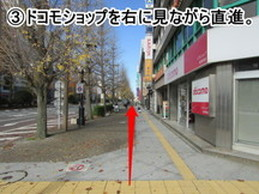 nigata-michi-3