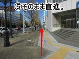 nigata-michi-5